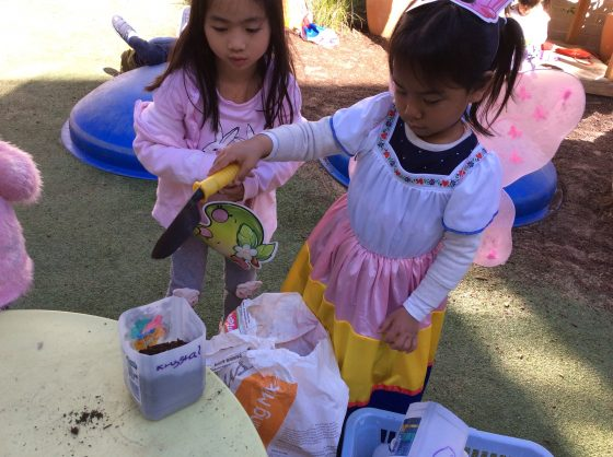 Preschool learns to garden